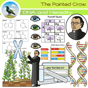 Heredity and DNA Clip Art by The Painted Crow | Teachers ...