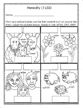 Heredity for First Grade (1-LS3)