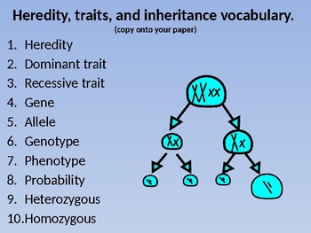 Heredity, traits, and inheritance vocabulary words no prep power-point.