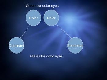 Heredity/Genetics