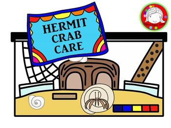 Hermit Crab Care Clipart (Personal & Commercial Use)