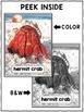 Hermit Crab Close Reading Passage Activities