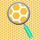 Hexagon Tiles Rainbow Backgrounds / Digital Paper Clip Art Set Commercial Use