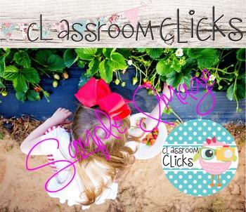 Child Picks Strawberries  Image_31: Hi Res Images for Bloggers & Teacherpreneurs