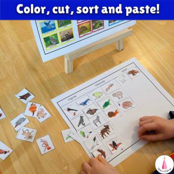 Hibernate, Migrate, Adapt - Sorting Activity. Animals in Winter