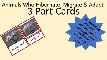 Hibernate, Migrate & Adapt Classifying and 3 Part Cards (Bundle)