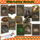 Hibernating Animals in their homes Clip art