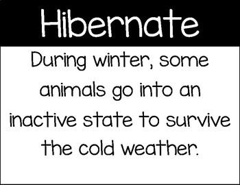 Hibernating Animal Sort