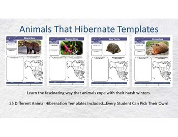 Hibernating Animals Templates