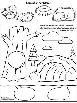 Hibernation Activity   Hibernation Kindergarten