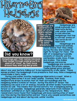 Hibernation:  A Non-Fiction Reading, Science, and Writing Winter Animals Unit