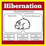 Hibernation Activity | Hibernation Kindergarten | Hibernation Worksheet