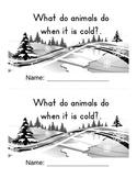 Hibernation Book for Kindergarten