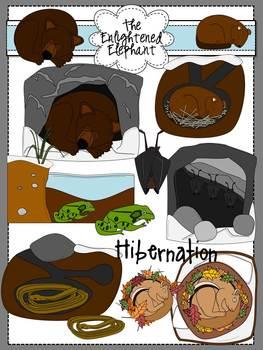 Hibernation Clip Art by The Enlightened Elephant   TpT