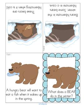 bear hibernation foldable booklet free by kidsparkz tpt. Black Bedroom Furniture Sets. Home Design Ideas