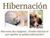 Hibernation Hibernacion