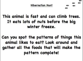 Hibernation Hunt