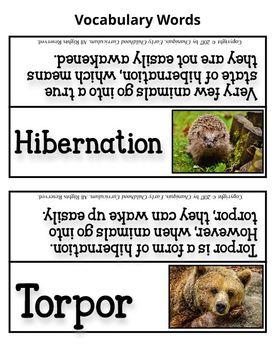 Hibernation (Thematic Unit 16)