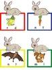 Hibernation Literacy Unit-Activities, Chart Pieces, Literacy Centers-Common Core