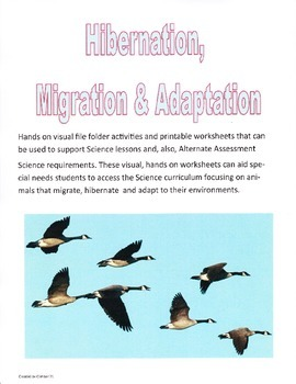 Hibernation, Migration & Adaptation