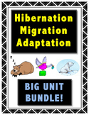 Hibernation, Migration, Adaptation // FULL UNIT