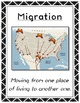 Hibernation, Migration, Adaptation // Science // Assessmen
