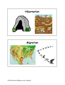 Hibernation, Migration, Adaptation Visual Cards