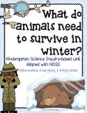 Hibernation Migration Adaptation Winter Animals Kindergarten Science