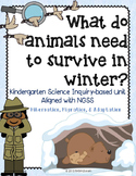Hibernation Migration Adaptation Winter Animals Kindergarten Science