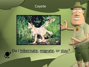 Hibernation & Migration PowerPoint Lessons + Worksheets Bundle