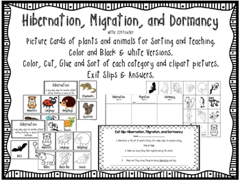 hibernation migration dormancy sorting cards activities by the 214teacher. Black Bedroom Furniture Sets. Home Design Ideas