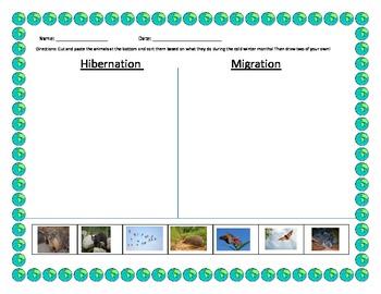 hibernation migration sort by erin zaleski teachers pay teachers. Black Bedroom Furniture Sets. Home Design Ideas