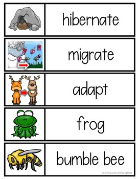 Hibernation, Migration, and Adaptation Word Cards