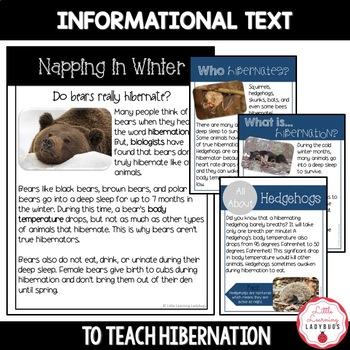 Hibernation Non-Fiction Resources {Close Reads & Informational Text}