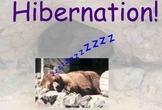 Hibernation - Preparation and Different Animals