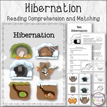 Hibernation Reading Comprehension and Matching