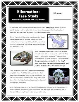 Hibernation // Science // Worksheet // Case Study // PPT // Animal Hibernation