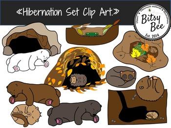 """Hibernation Set Clip Art."" by Bitsybee   Teachers Pay ..."