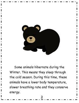 Hibernation Unit: Literacy & Math Activities