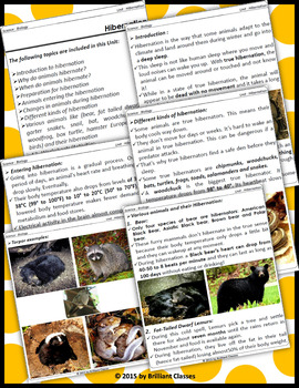 Hibernation : Unit with Worksheets /Activities
