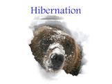 Hibernation and Migration