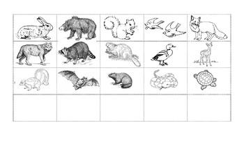 Hibernation sorting activity (french)