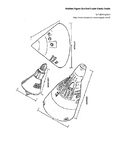 Hidden Figure Study Guide : Grade 1-2