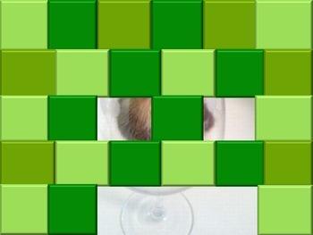 Hidden picture game