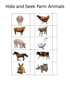 Hide and Seek Farm Animals