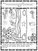 Biomes Hide and Seek: Worksheets (Fun Activities)