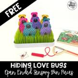 Hiding Love Bugs- Open Ended Sensory Bin Materials