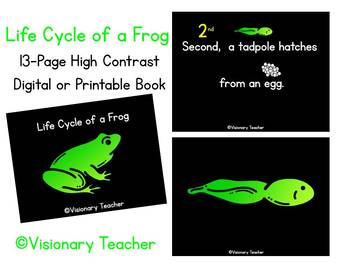 High Contrast Book - Life Cycle of a Frog - Digital