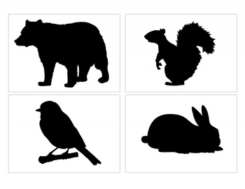 High Contrast Cards for Infants featuring North American Wildlife