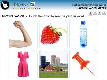 High Frequency Picture Words: Picture Word Match - MAC Gr. PK-2